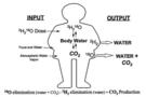 应用ABB LGR分析仪与双标水法显著促进人体能量消耗的评估