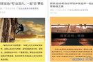"""广东白云学院:""""居家运动""""云课堂,助力抗疫成网红"""