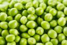 某地食品菌落总数超标手持式ATP荧光检测仪