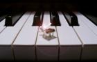 """""""云上钢琴""""联袂青赛 谋局千亿钢琴教育市场"""