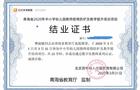 钉钉在线教学成新技能 青海省完成万名数字化教师培训