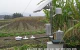 供应农田小气候自动观测站生产