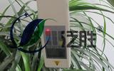 DDZ系列植物抗倒伏测定仪