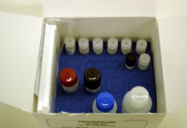 大鼠L苯丙氨酸解氨酶(PAL)ELISA试剂盒