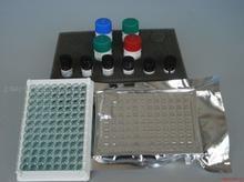 小鼠白介素27复孔(IL-27)ELISA试剂盒包被