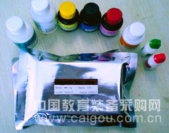 人Human血管紧张素Ⅰ受体抗体(ANG-ⅠR)ELISA Kit检测价格说明书