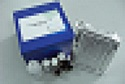 代测兔抗单核细胞抗体(AMA)ELISA试剂盒价格