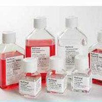 品红亚硫酸钠琼脂(远滕氏琼脂)培养基价格
