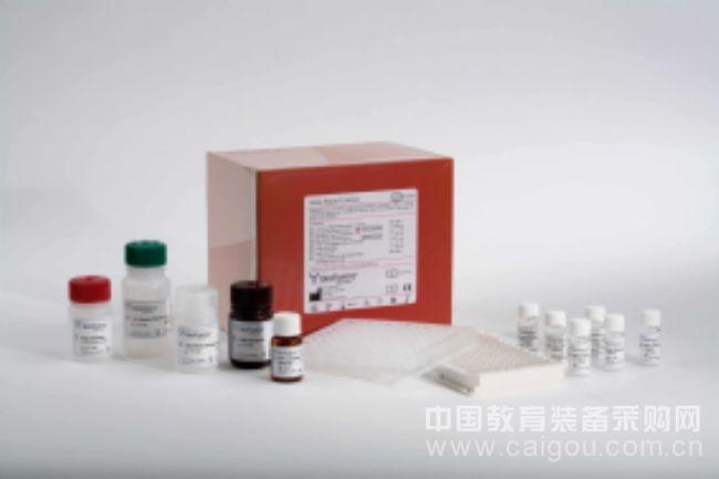 小鼠胰岛素ELISA试剂盒