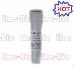 Anti-AFP McAb(labeling) / AFP抗體(label)