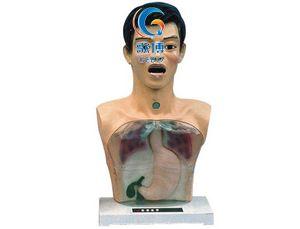 帶警示透明洗胃機制模型
