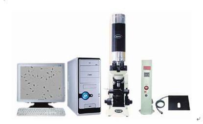 精子全自动分析/精子全自动分析/动物精子全自动分析(优势)