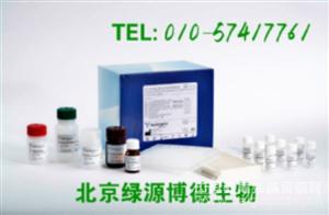 人血管舒缓激肽 Elisa kit价格,BK进口试剂盒说明书