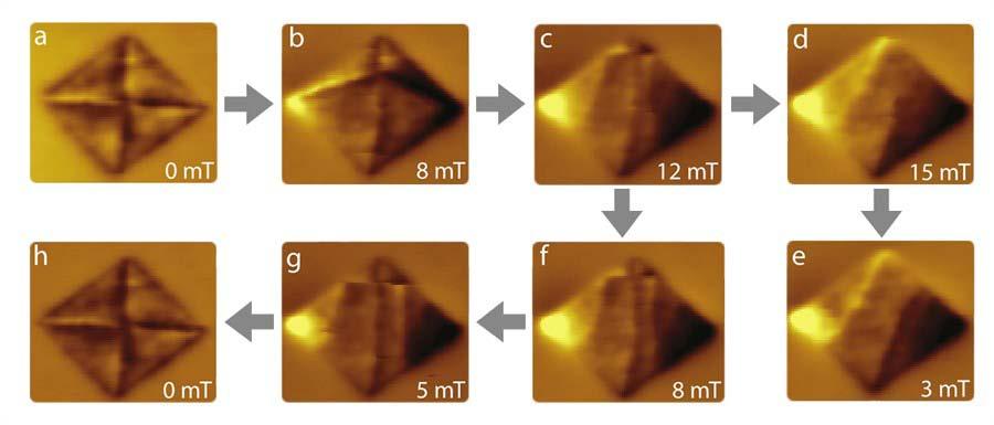 低温强磁场磁力显微镜与共聚焦显微镜